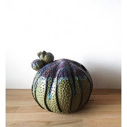 Vase cactus vert en grès...
