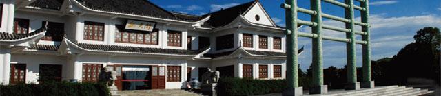 WANGLONG porcelaine jingdezhen chine céramique manufacture
